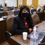 Fátima Araújo propõe instituição de Semana Municipal para tratar da Lei Maria da Penha